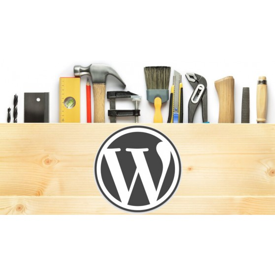 Instalacion Wordpress ( Hosting + Dominio)